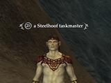 A Steelhoof taskmaster