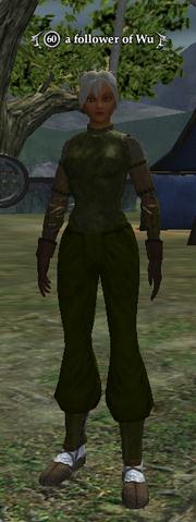 A follower of Wu (Wood Elf)