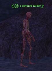 A tortured raider