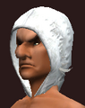 Arcane Beguiler's Bejeweled Cowl (Equipped).png