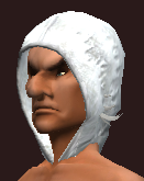 Arcane Beguiler's Bejeweled Cowl (Equipped)