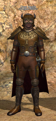 Liege Aquila