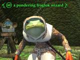 A pondering froglok wizard