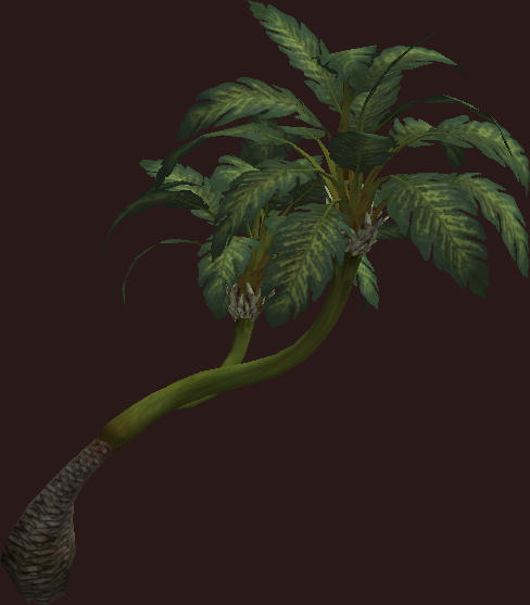 leaning palm tree everquest 2 wiki fandom powered by wikia