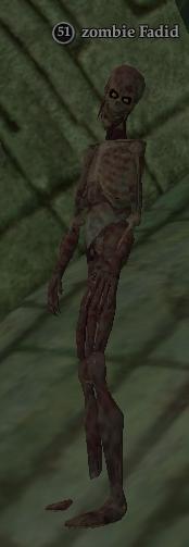 Zombie Fadid