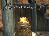 A Black Magi guard