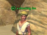 A cheering fan