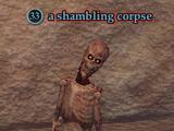 A shambling corpse