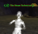 The Steam Technician