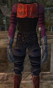 Doomseer leggings worn