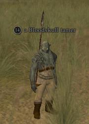A Bloodskull tamer