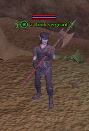 A Rook sergeant
