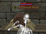 A Tortured Maid