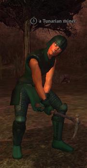 A Tunarian miner (wood elf)