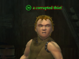 A corrupted thief