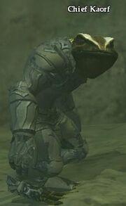 Chief Kaorf (Hidden VoK)