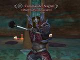 Commander Nagrat