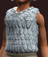 Fearless Pathfinder's Chain Tunic (Equipped)