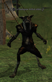 A Darkpaw tribal elder