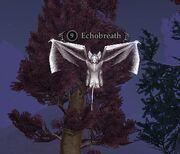 Echobreath