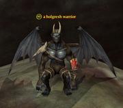 A holgresh warrior