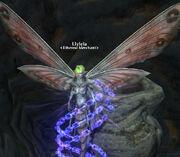 Llyleia