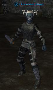 A Blackshield pillager