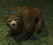 A briarpaw cub