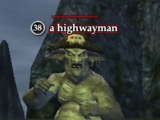 A highwayman (Thundering Steppes)