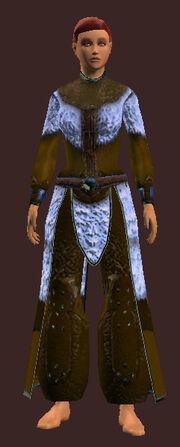 Arctic Frostwind Champion's Robe eq