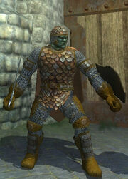 Rustic brigandine (Armor Set) (Visible, Male)