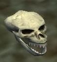 Skull of a fallen Iksar