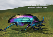 A mutated luclinite beetle