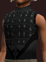 Stormbringer's Tunic of the Citadel (Equipped)
