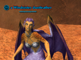 A Windsister dustfeather