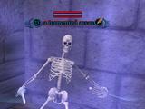 A tormented assassin