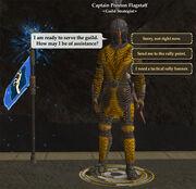 Guildstrategist