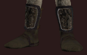 Moonfield Boots of the Wanderer (Equipped)