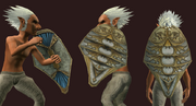 Almgiven Tower Shield of Draconic Victory (Equipped)