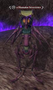 A Humator hivesister