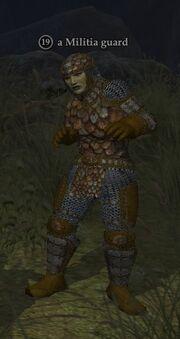 A Militia guard (Commonlands)