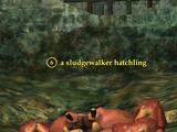 A sludgewalker hatchling