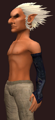 Cenobite's Arm Wraps of the Citadel (Equipped)