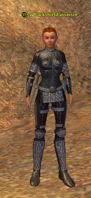 A Blackshield assassin (half elf)