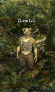 Cicero Puer
