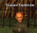 Thayare Faystrider