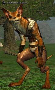A Sabertooth elder
