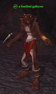 A Sootfoot gatherer