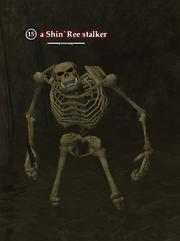 A Shin`Ree stalker
