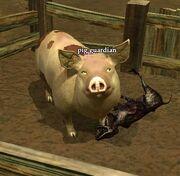 Pig guardian